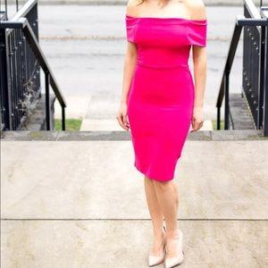 Like New Hot Pink Zara Dress